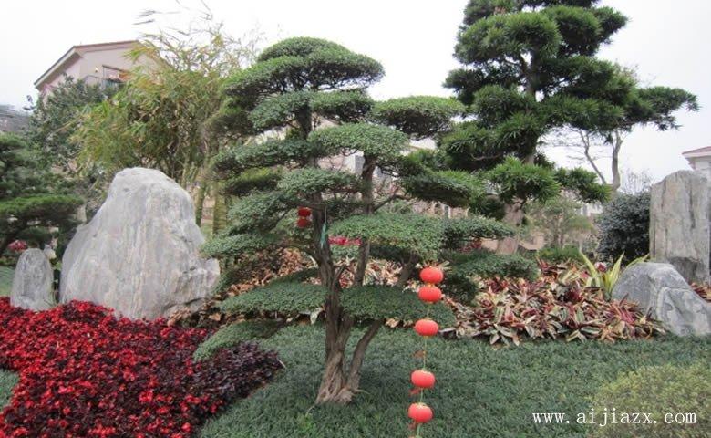 雅yi趣wei的园lin景观装修xiao果图